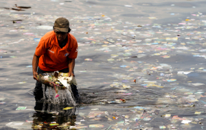 The Governor of Puerto Rico has banned plastic bags