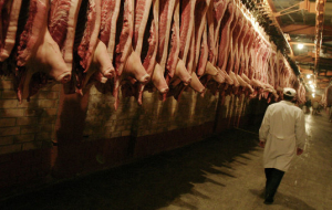 Tkachev: Russia in 2-3 years could put in the Asia 200 thousand tons of meat