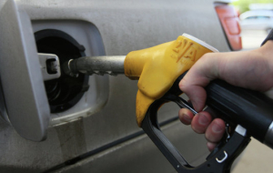 Rosstat: the Russian in September reduced the prices of petrol by 1.6%