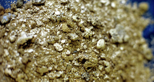 Media: private owners will be allowed to extract placer gold in Magadan