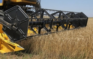 Grain interventions in the Crimean stock exchange will resume on Thursday