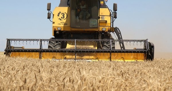 MP: SAR authorities are ready to consider the question of the wheat supply from Russia