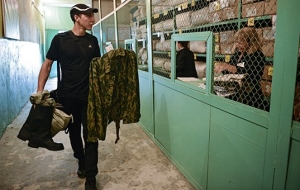 The defense Ministry has proposed to impose penalties for evading fees by 50 thousand rubles.