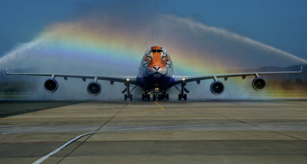 """Okulov: the flights of """"Transaero"""" will distribute after verification of the carrier"""