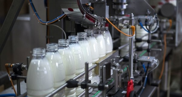 The authorities of Kuban will develop a strategy for the development of the dairy industry