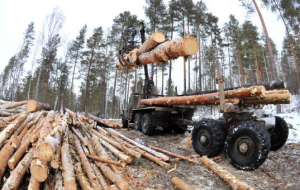 The FFA: the penalty for non-use of the system of accounting of wood will increase