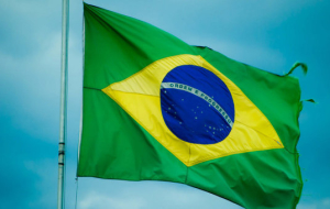 Senators of the Russian Federation and Brazil will develop inter-parliamentary cooperation