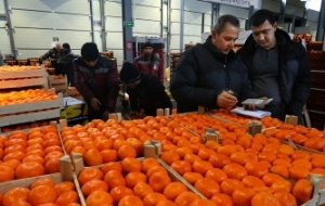 Russia introduces additional checks and enhances the control of the supply of products from Turkey