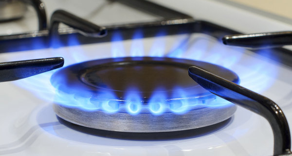 The Commission instructed the FEC to develop the concept of gas market development in Russia