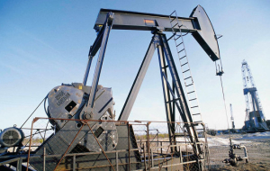 Oil prices have moved to active growth after the fall