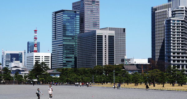Ambassador: Moscow expects the decline in turnover from Tokyo by 30% this year