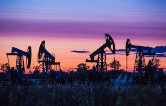 Oil prices can begin to grow through the year, the Executive Director of the IEA