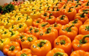 Rosselkhoznadzor banned the import of 24 tons of infected pepper from Israel