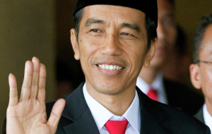 Indonesia's President plans to visit Sochi may 17-20