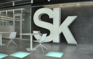"REC: SKOLKOVO should look at the ""Indian silicon valley"""