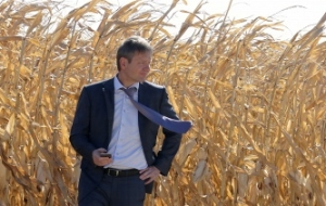 The Rosselkhoznadzor is ready to expand the list of regions from which the grain is exported to China