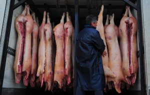Hollande: France gives priority to the issue of the Russian embargo on the import of pork