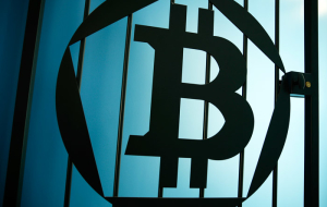 The Finance Ministry has proposed to put for the release of bitcoins for up to 7 years