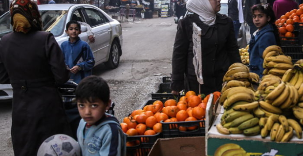 Syrian vegetables and fruits began to arrive on the Russian shelves