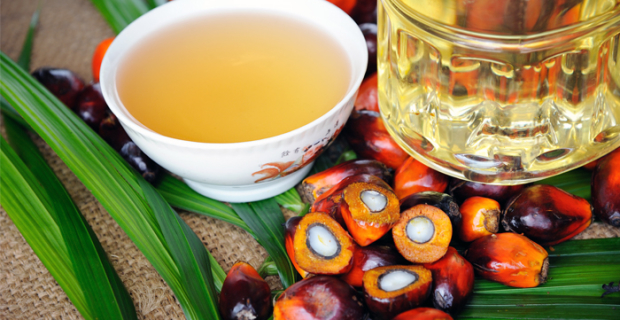 Putin instructed by June 1 to resolve the issue with the excise tax on palm oil