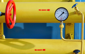 The FAS has proposed to fully liberalize the gas export