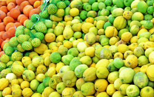Tkachev has promised by 2020 to reduce agricultural imports to citrus