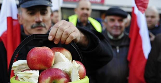 Smolensk guards were not allowed sanctions 60 tons of apples from Poland