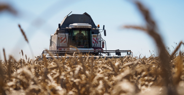 Grain harvest in southern regions of Russia are higher than 2016, despite the bad weather