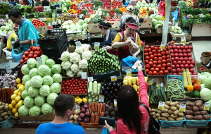 The suburbs intends to export agricultural products to China